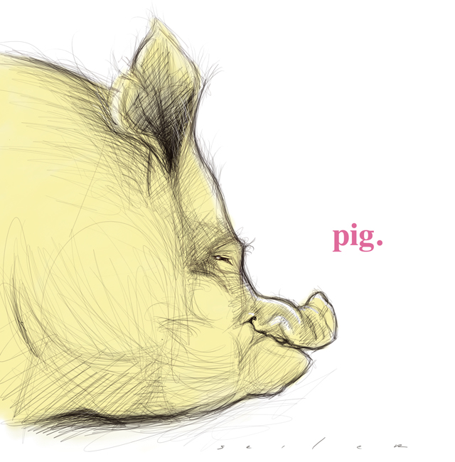 piggysketch